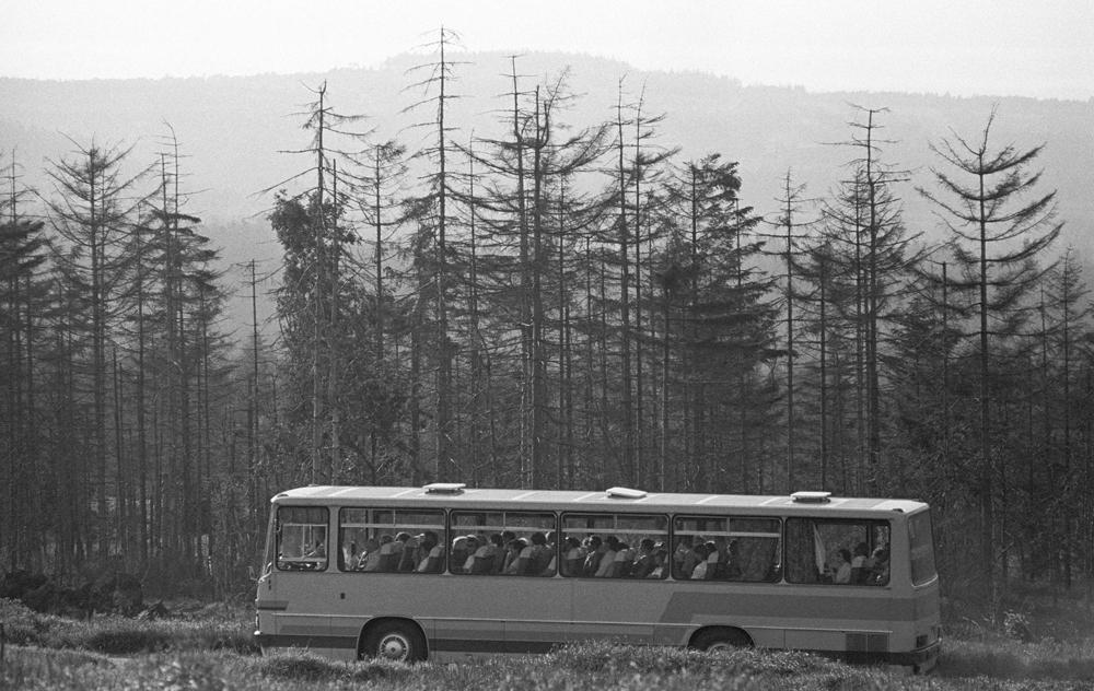 Waldsterben im Erzgebirge. Quelle: Bundesstiftung Aufarbeitung, Fotobestand Klaus Mehner, 87_0711_UMW_ErzGeb_14